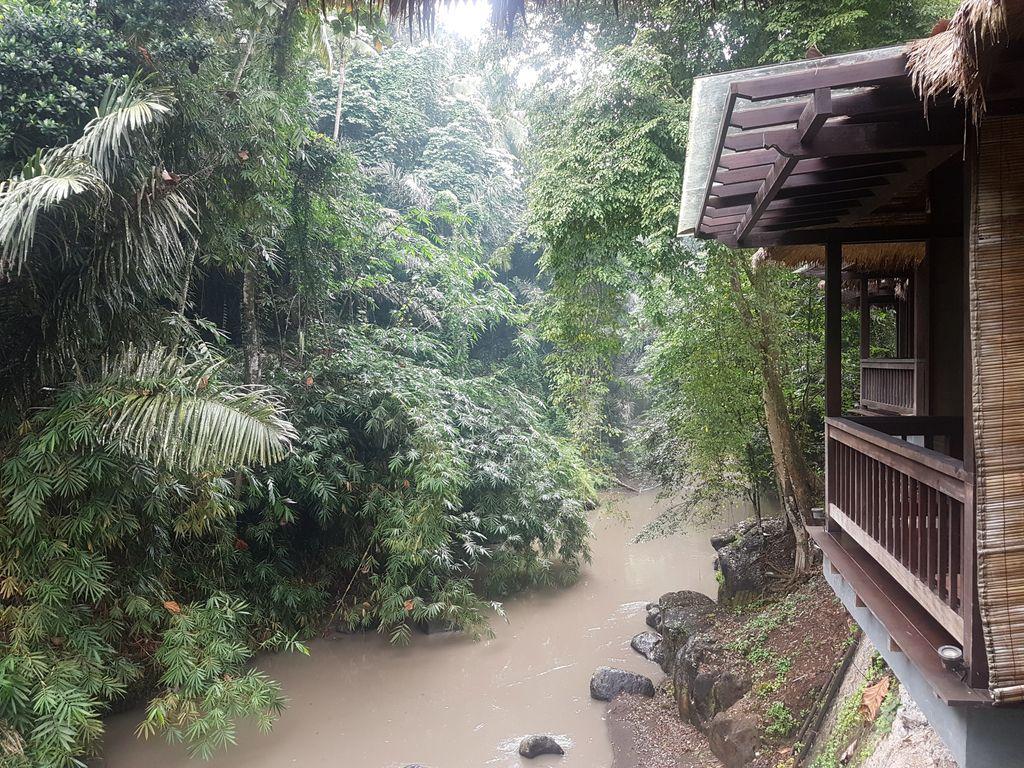 Sukhavati Ayurvedic Retreat Bali - views