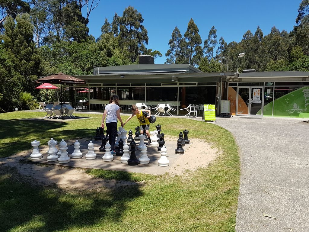 Otway Fly Treetop Adventures - Chess