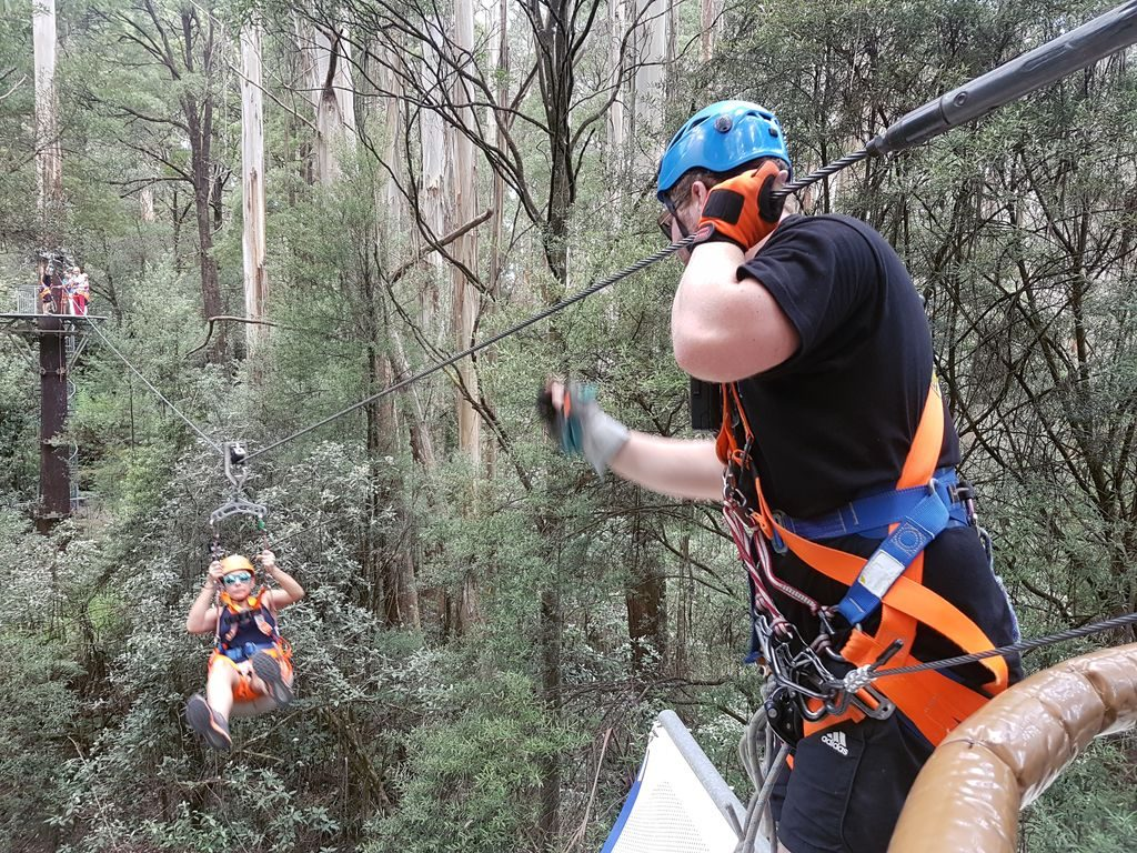 Otway Fly Treetop Adventures - Mommy Travels