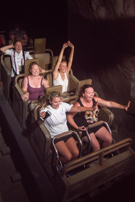 Disney VIP Tours - roller coaster