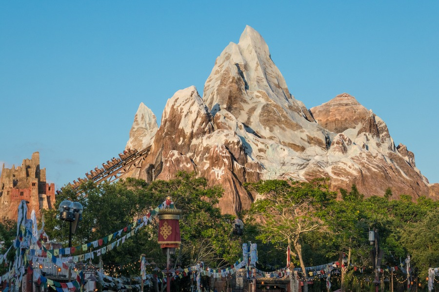 Disney VIP Tours - Mountain