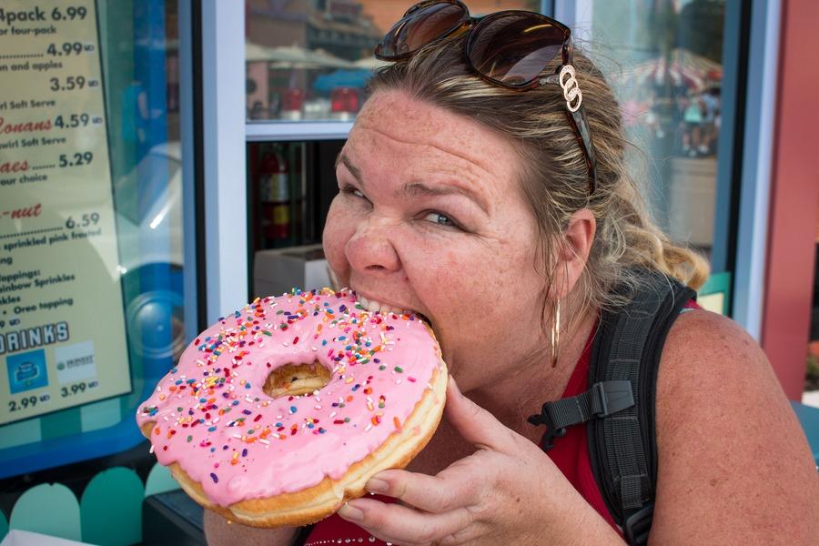 Guide To Universal Studios Orlando - donut