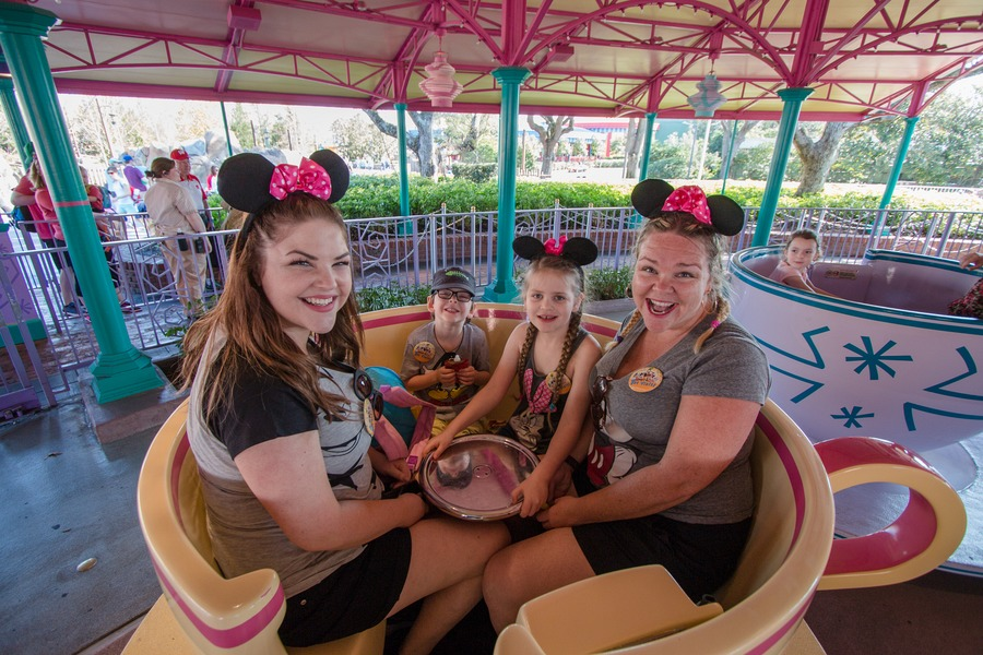 Disney VIP Tours - Family