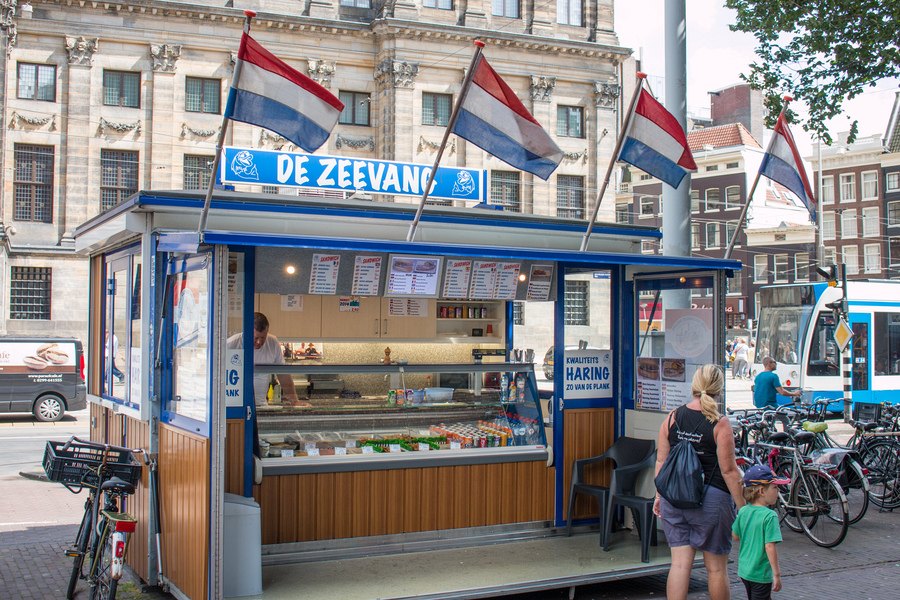 Dutch food Netherlands- herring