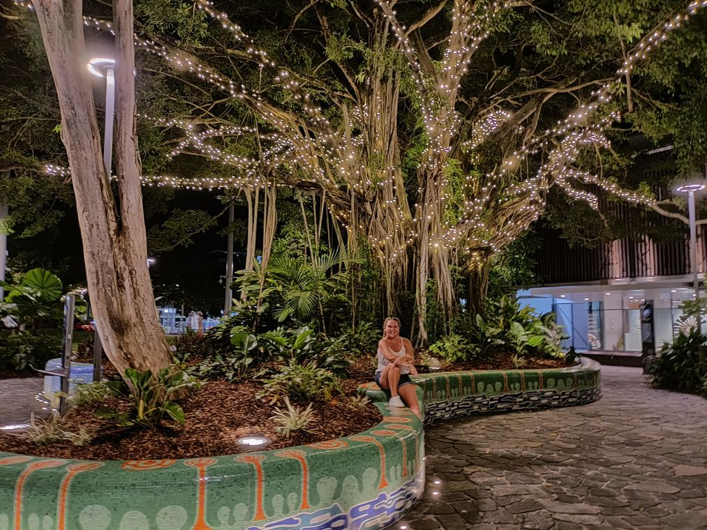 best things to do in cairns Cairns