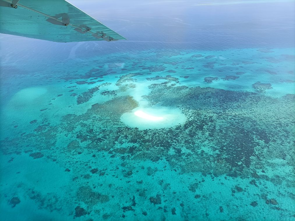 best things to do in cairns GBR